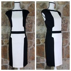 NWT Lauren Ralph Lauren 16 Color Block Dress